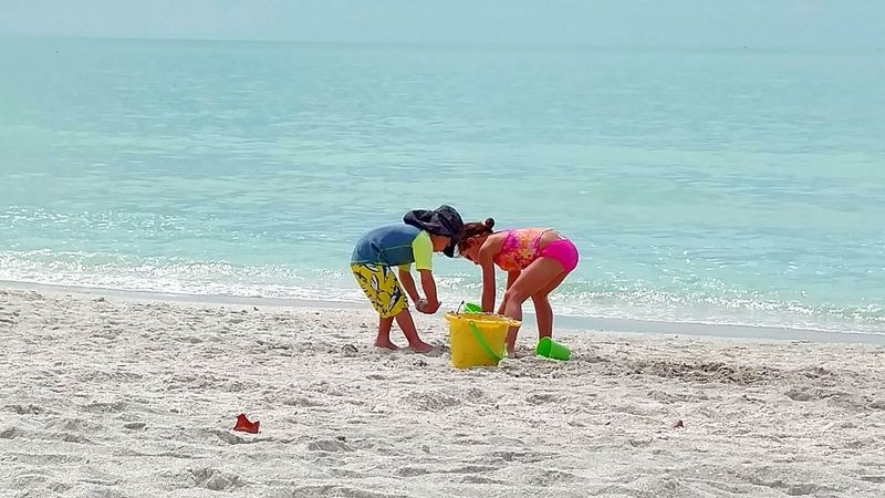 Kids Playing Kids Having Fun Kids On The Beach Children Playing On Beach Making Sandcastles Playing In The Sand Happy Children Beach Photography Beach Toys Playful Children Having Fun Beach Day Vacation Time Florida Life Sarasota Florida Saltlife