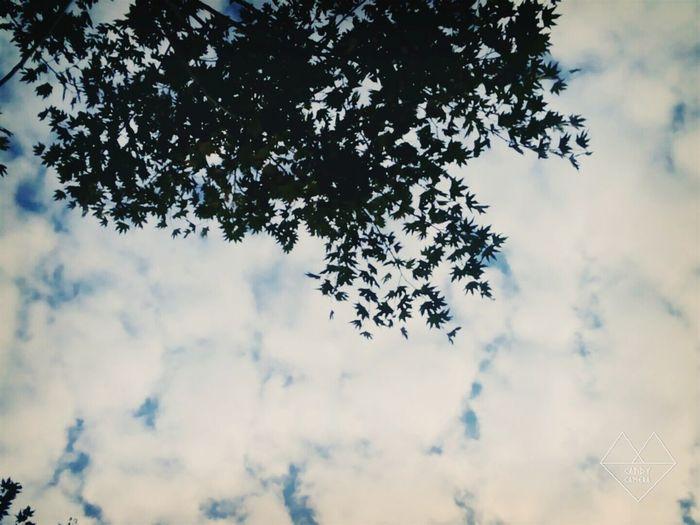 Sky of love ❤💙☁ Tokat Gokyuzu Sevdicek Mutluluk Huzur