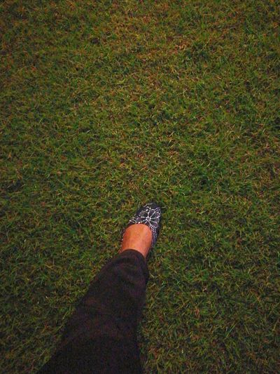 One Person Grass Human Body Part