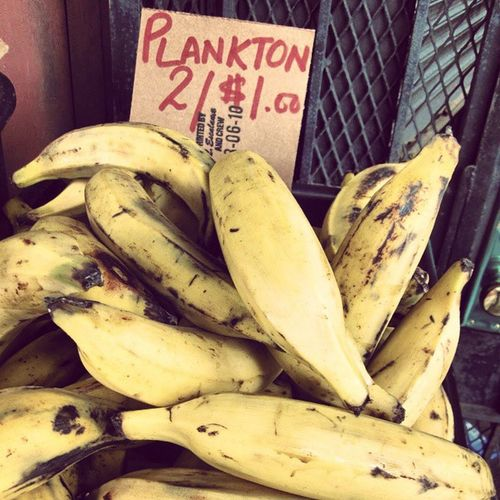 Uhm.....sure, if you say so. 🍌 🐋 Plankton Didyoumeanplantains Samedifference Classicnewyork onthestreet