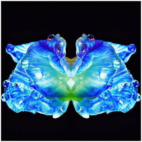 Digital composite image of blue water against black background