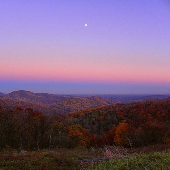 A beautiful sunset over the mountainous region in Shenindoah . Let's hope this school year will be as colorful as these trees. Trees Colorful School Firstday Sunset Beautiful Moon Risingmoon Autumn Hereshoping Fall Bluesky Orange Instadaily Ztprod