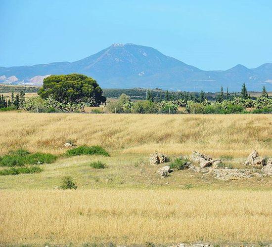 Tunisia IgersTunisia Mountain Wikilovesearth Tree Crops Carthagina من أوذنة بوقرنين ... يولي بو قرن ^_^