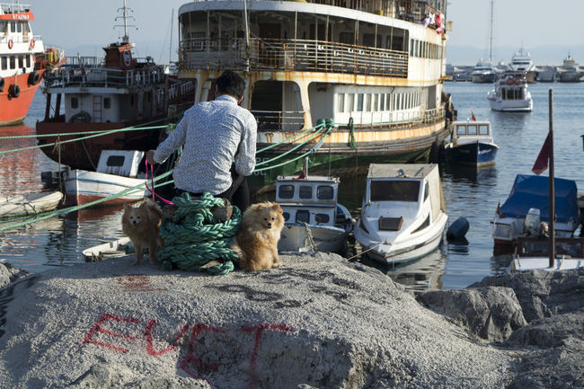 Nautical Vessel Water Transportation Mode Of Transportation One Animal Moored Harbor Real People Mammal Architecture Nature Day Men Building Exterior Vertebrate Sitting Built Structure Outdoors Dog Dogs Dogslife Dogsofinstagram EyeEmNewHere Capture Tomorrow