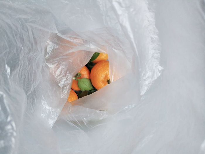 High angle view of orange fruit in plastic
