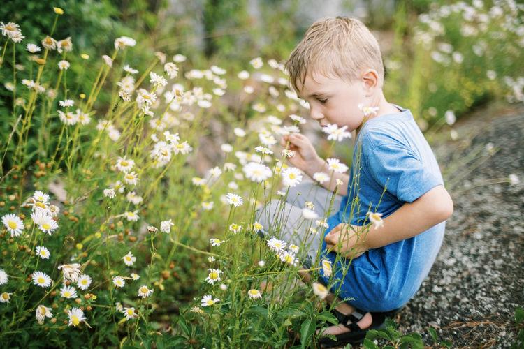 Rear view of boy on flowering plants