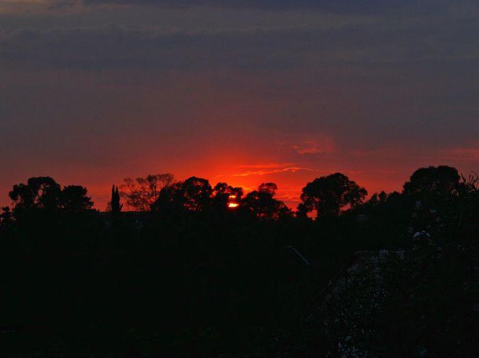 Sunset Tranquil Scene Beauty In Nature Majestic Orange Color Sky Dark Vibrant Color