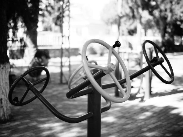 Outdoor Training Focus On Foreground Metal Outdoors Day Tree No People Close-up Bicycle Rack Nature Excercise Outside Gym Blackandwhite Black And White Monochrome Shallow Depth Of Field