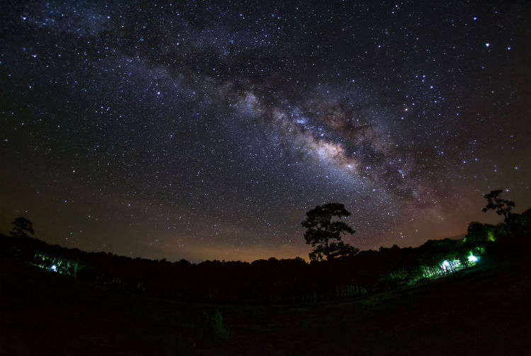 Milky Way and silhouette of tree at Phu Hin Rong Kla National Park,Phitsanulok Thailand, Astronomy Beauty In Nature Constellation Galaxy Landscape Milky Way Nature Night No People Outdoors Scenics Sky Space Star - Space Starry Tranquil Scene Tranquility Tree