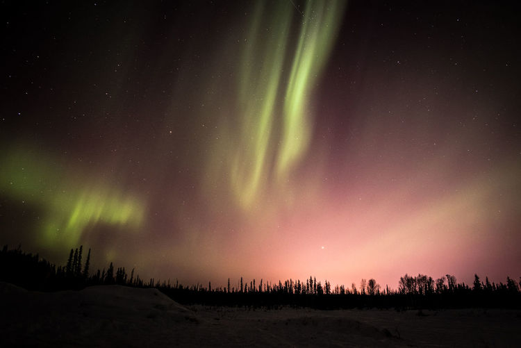 Architecture Aurora Aurora Borealis Fine Art Photography Landschaft Northern Lights Pondering Silhouette Wonderful Alaska Amazing Astronomy Astrophotography Fairbanks Inspiration Landscape Nature Night Sky No People Outdoors Scenics Space Weather Tranquility Winter