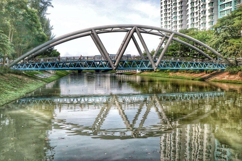 Arch Bridge Bridge - Man Made Structure Kallang Park Connector Nature Nparks Nparksbuzz Reflection