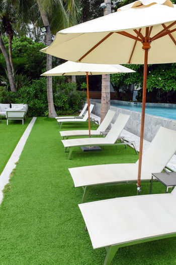 Lawn by swimming pool