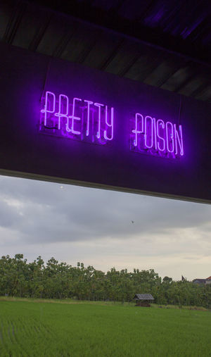 Bali Bali, Indonesia Close-up Communication Day Illuminated Neon Neon Lights No People Outdoors Pretty Poison Purple Text Vertical