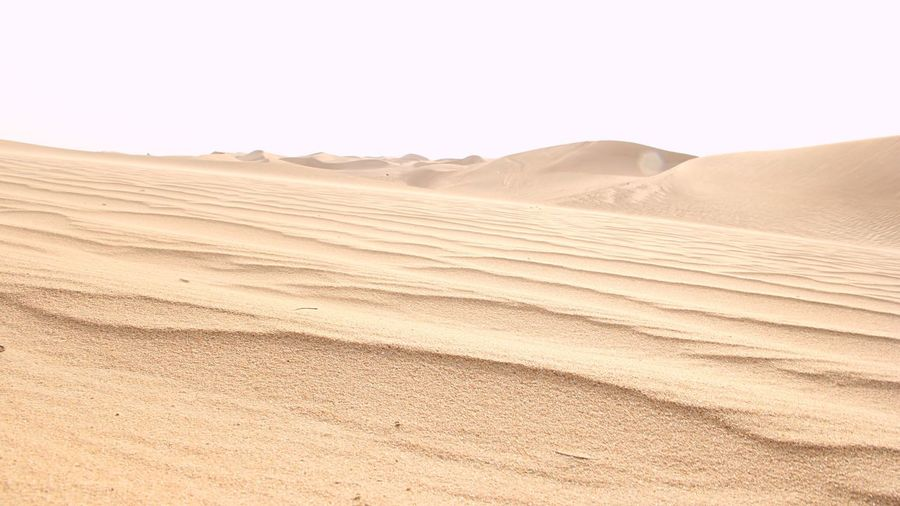 Landscape Sand Land Sand Dune Environment Desert Climate Nature Scenics - Nature Arid Climate Tranquility Sky No People Hill Non-urban Scene Semi-arid Natural Pattern Pattern Outdoors Day