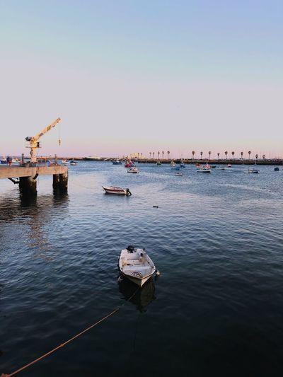 Cascais harbour