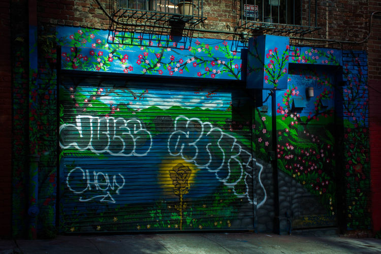 Urban Life Brick City Life Flowers Graffiti Streetart Streetphoto_color Streetphotography Urbanphotography Wall