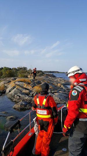 Life Jacket Sea Teamwork Skill  Water Day Crew Rescue Rescue Dog Exercise Search And Rescue Sjöräddningssällskapet