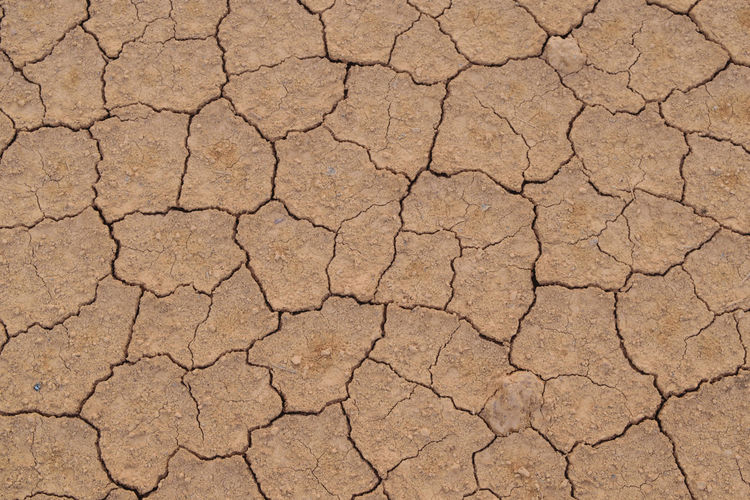 Naturelovers Cracked Pattern Arid Climate Environment High Angle View Textured  Full Frame Food No People Backgrounds Nature Day Nature Nature Photography Crack Cracks Crackers Cracker Cracked Earth Cracked Ground Cracking Beauty In Nature Ground Close-up Resist