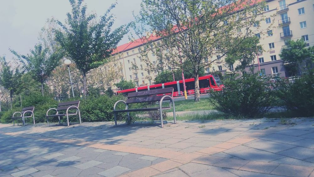 Bratislava Bratislava, Slovakia Street Streetphotography Tram Tramvay House Lonely May May 2016 May Day Spring Green Tree People Bench Benches All Around Benchinthepark