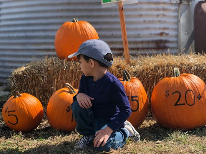 Boy looking at pumpkins for sale at farm