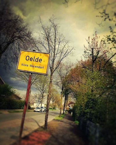 Oelde Germany Mycity Mypointofview Myperspective Citylandscape Road Street Spring Trees Inspiration Instalike Instadaily Vscomood VSCO Vscocam Streetphotography