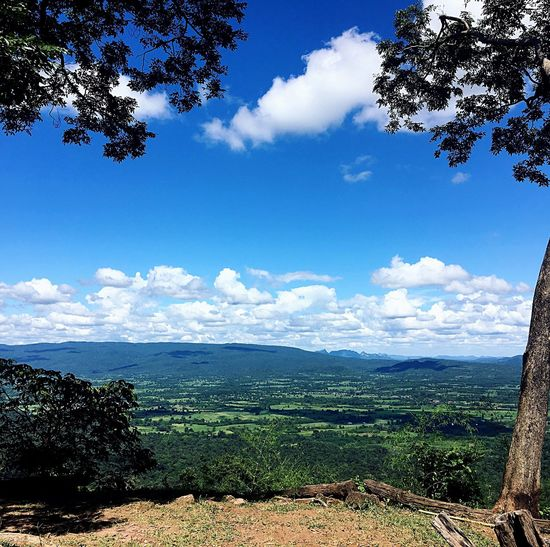 Tree Sky Nature Beauty In Nature Day Tranquil Scene Cloud - Sky Tranquility Scenics Mountain Landscape Mountain Range Outdoors No People Blue Growth