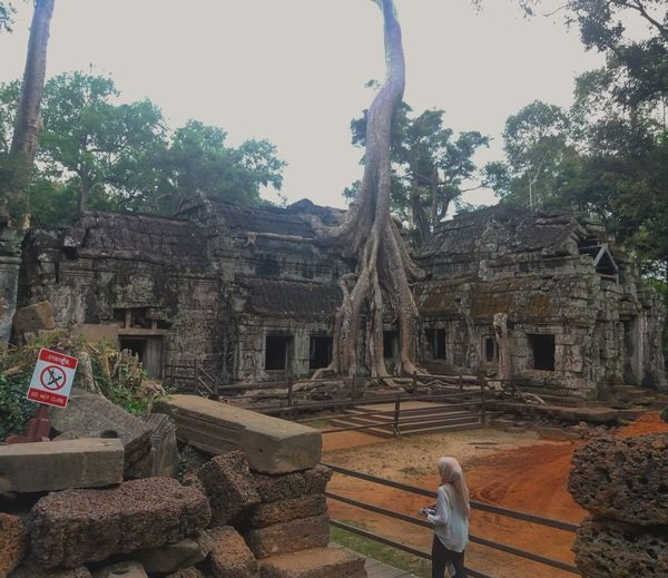 """""""Where is lara?"""" History Ancient Spirituality Architecture Religion Built Structure Place Of Worship Day Tree Old Ruin Outdoors Ancient Civilization Building Exterior Sky Nature TaProhm Lost In The Landscape Conected Whit Travel People Cambodia Cambodia Temple Siemreap Explorecambodia Photography Landscape"""