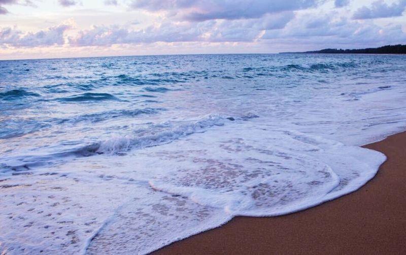 sea🌊 Sea