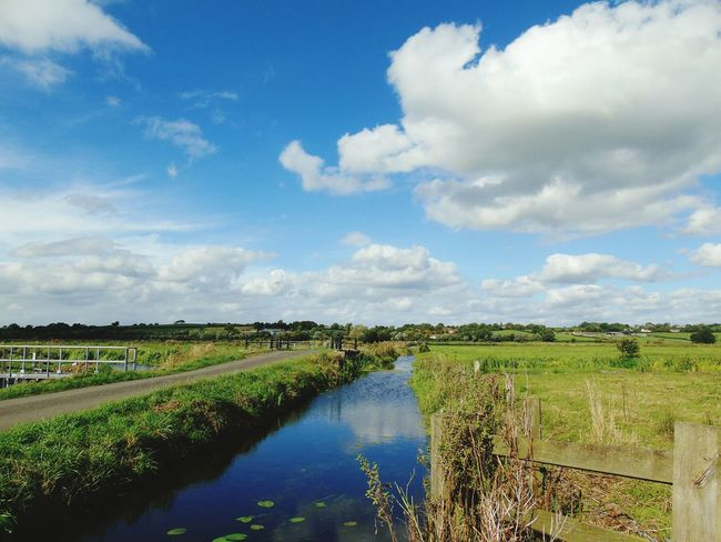 Water Tranquil Scene Stream Grass Canal Landscape Cloud - Sky Rural Scene Nature Growth Flowing Narrow Beauty In Nature Somerset Levels Uk In All Its Glory Nature On Your Doorstep Cloud Day Reflections In The Water