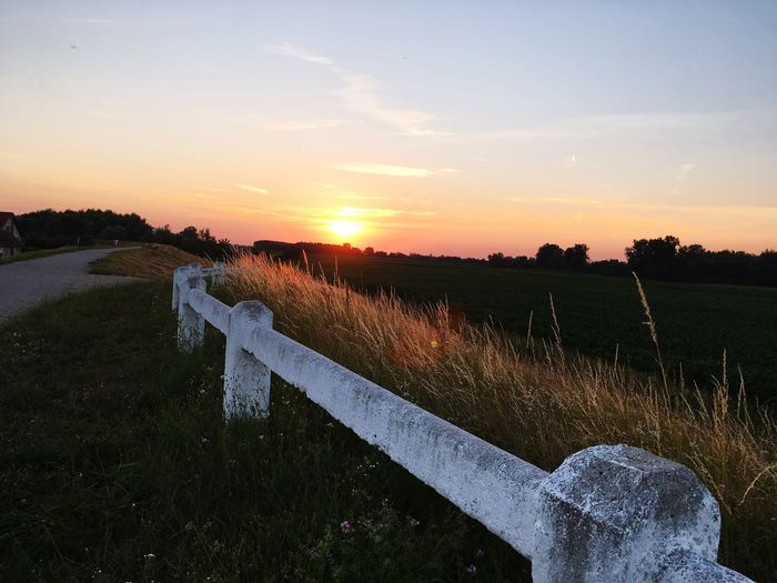 Walk in the sunset Sunset Sky Plant Nature Field Environment Orange Color Land