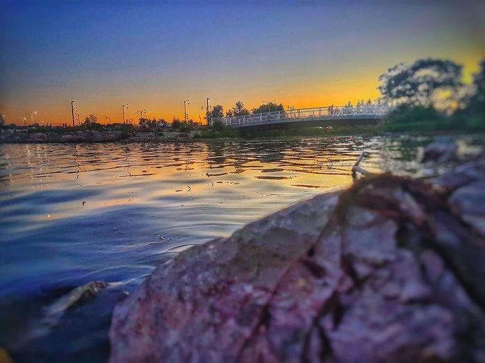 Bird Water Sea Sunset Beach Silhouette Beauty Reflection Low Tide Dusk