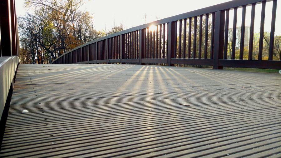 Autumn Bridge Sun Light And Shadow