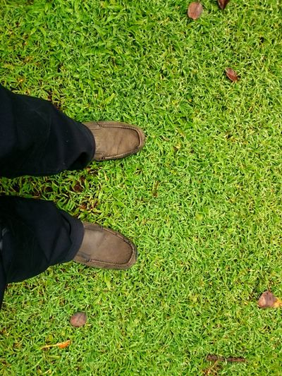 Low Section Person Green Color Shoe Standing Grass High Angle View Lifestyles Green Footwear Boot Personal Perspective Grassy Growth Day Outdoors