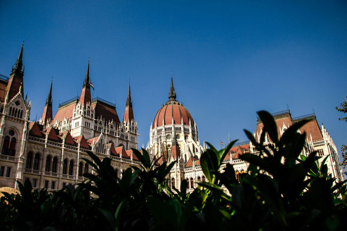 Hungary Architecture Building Exterior Built Structure Bush Clear Sky Day Dome Government Kossuth Square Low Angle View No People Outdoors Parlament Parlament Of Hungary Politics And Government Sky Travel Destinations