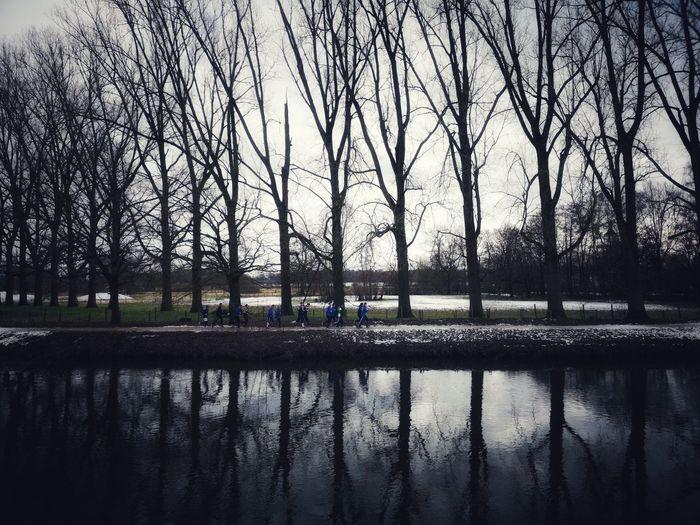 Eyemphotography Eyem Best Shots Tree Water City Reflection Sky Architecture