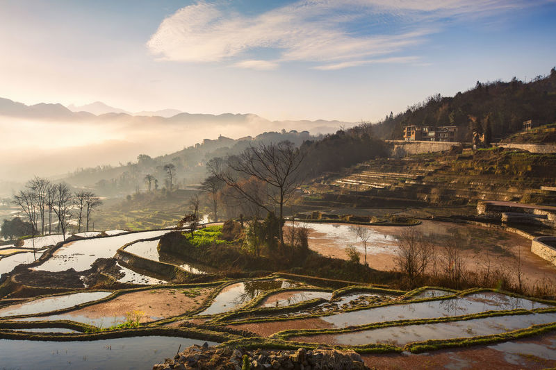 Landscape in Yangzhou,China Morning Weather Beauty In Nature Cold Temperature Day Hazy  Landscape Mist Mountain Nature No People Outdoors Rice Terraces Scenics Sky Springtime Sunrise Tranquil Scene Tranquility Tree