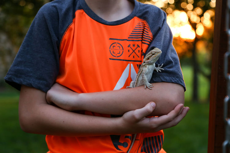 Young Boy Holding a Bearded Dragon Lizard in the Summer Bearded Dragon Lizard Beardie Boy Childhood Summer Summertime Child Reptile Reptile Love Focus On Foreground Front View Day