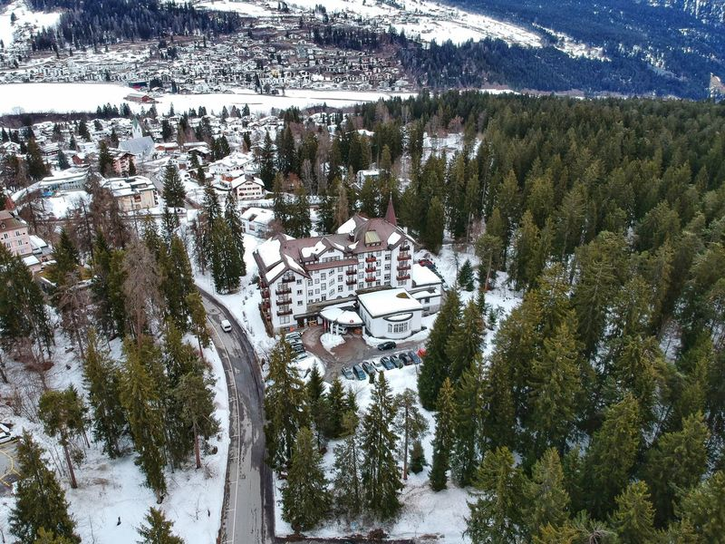 Sunstar Alpen Hotel from afar - Flims, Switzerland 2018 Snow Road Laax Flims Trees Flims-laax Forrest Dji Spark DJI X Eyeem Dji Tree Day Nature Outdoors Beauty In Nature No People Cold Temperature Snow Winter Growth Scenics Sky Close-up Adventures In The City
