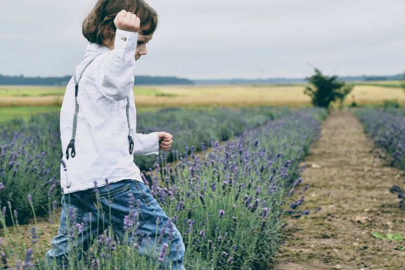 Child on lavender field