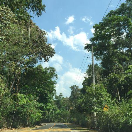Eyeem Philippines Subic Roadtrip Green Weekend Vacation