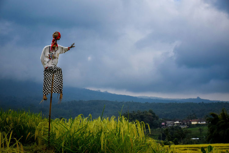 Scarecrow on rice paddy against cloudy sky