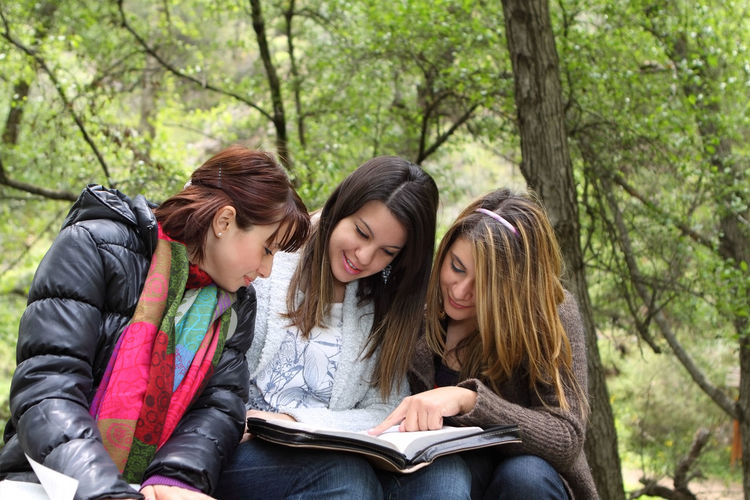 Three Girls Reading The Bible in Nature Bible Christian Religion Faith Belief Born Again Spirituality Wisdom Disciple Studying Female Meditating Reading Friends Groups Bible Study Nature Forest Outdoors Sharing  Learning Women Fellowship