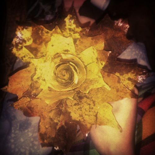Leafrose Rosé Fall Flower leaves rose made from leaves love it so pretty i made this last night