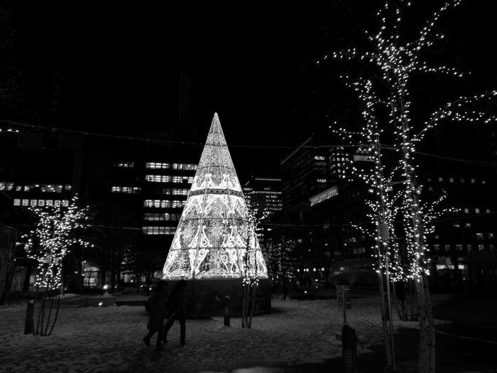 Christmas Christmas Decoration Christmas Tree Night Christmas Lights Sapporo,Hokkaido,Japan