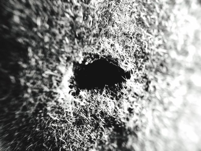 Black And White Strange Agujeros Hole To No Where Holes Water Motion Day Abstract Distorted Image