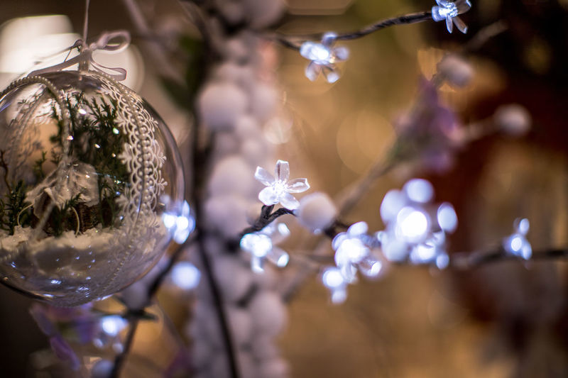 Close-Up Of Christmas Bauble Hanging On Tree