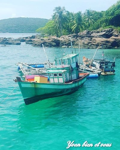 fish boat Trip Mer View Thailand Iles  Voyage Colors Vacations Trip Yvonbien Niceview View Water Nautical Vessel Transportation Water Mode Of Transport Sea Moored Day Nature Beach Outdoors No People Scenics Beauty In Nature