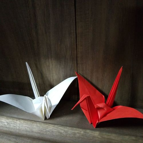 Folded paper crane Origami Folded Paper Crane 折り鶴 Origami Art Origami Cranes Origamicrane Origami Craft Origami Studio Shot Red Black Background Close-up