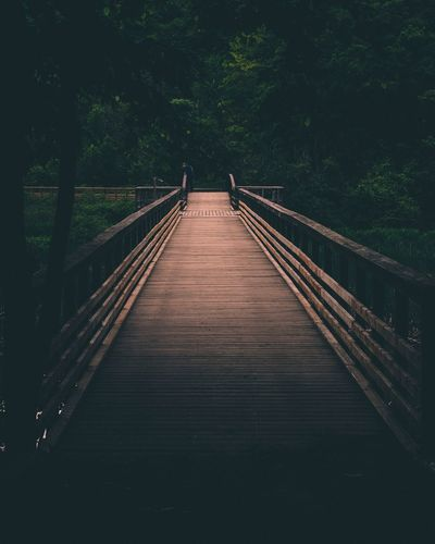 Straight & Narrow Jungle Moody Nature Tones Moody Direction The Way Forward Connection Bridge Transportation Tree Footbridge Nature Built Structure Plant Architecture Bridge - Man Made Structure vanishing point Real People Outdoors First Eyeem Photo