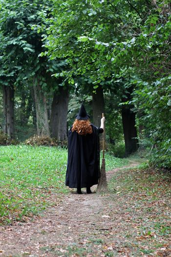 Rear view of witch holding broom standing on footpath in forest